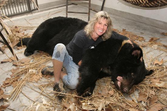 Jill Robinson moon bear